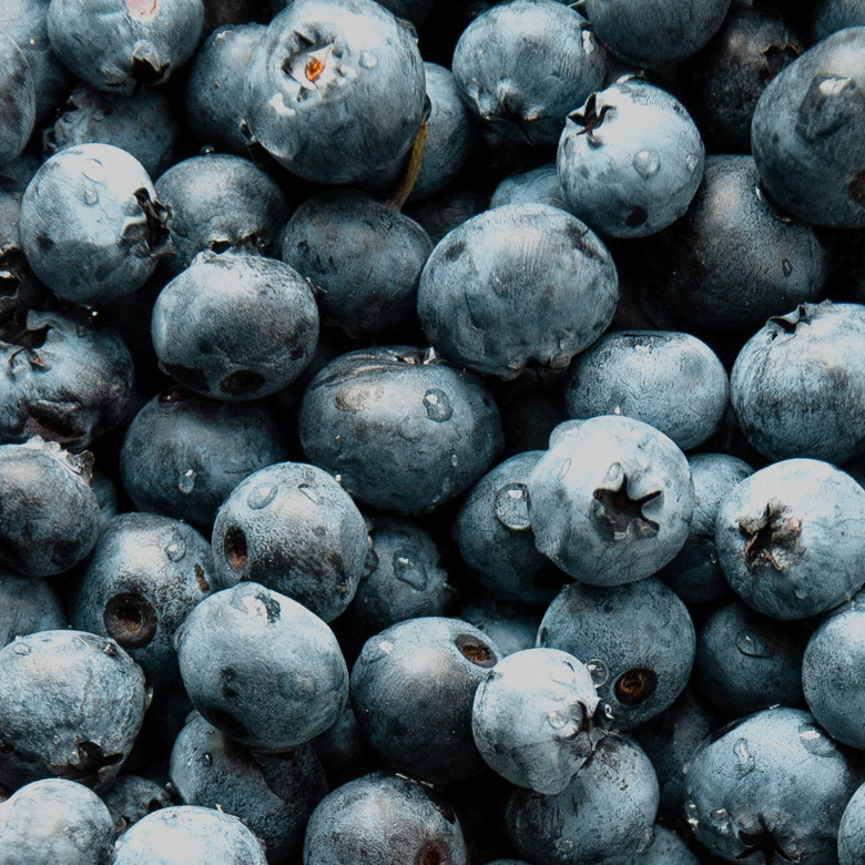 blueberry_fruit_pile
